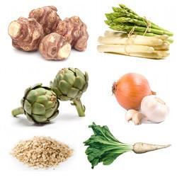aliment prebiotique