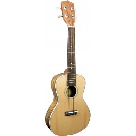 ampli ukulele electro acoustique