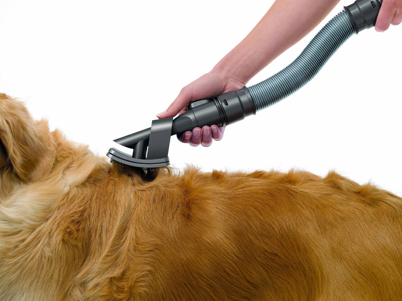 aspirateur pour animaux
