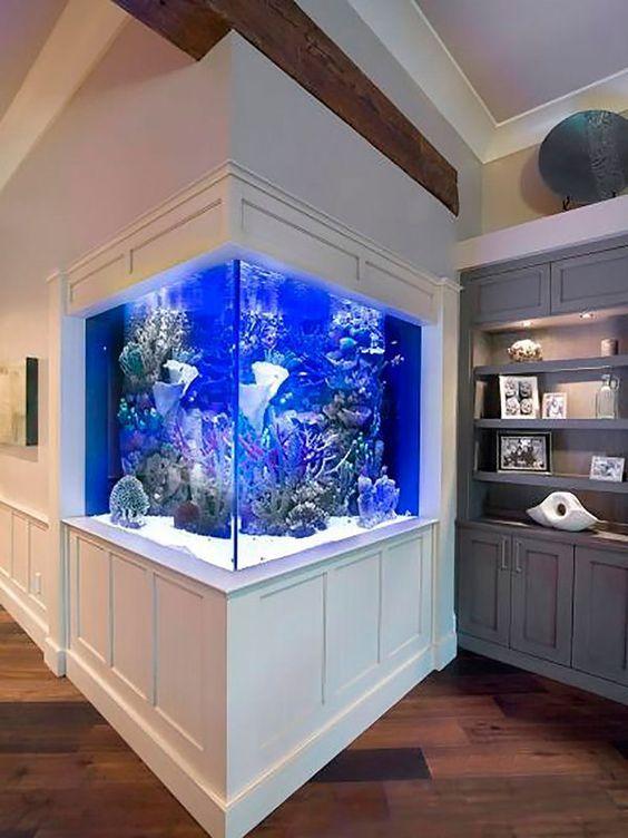 aquarium d'angle design