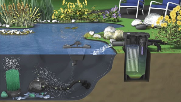 bassin filtration