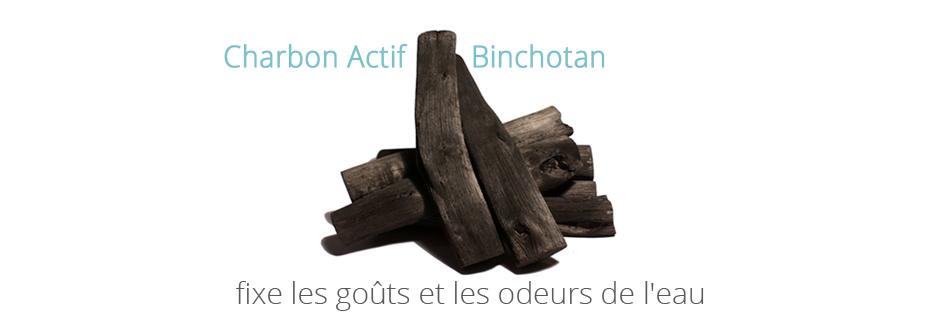 baton de charbon actif