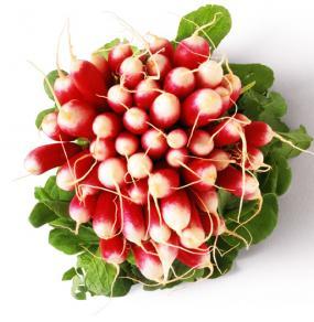bienfait du radis