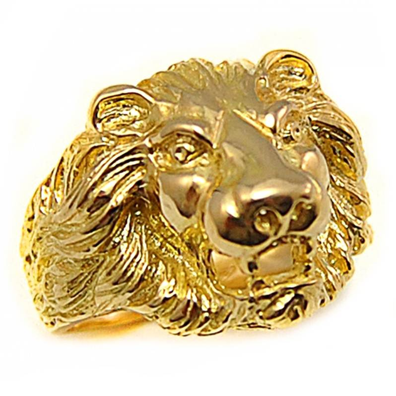 chevaliere homme lion
