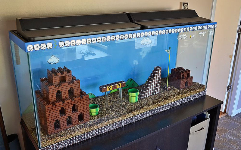 comment faire un aquarium