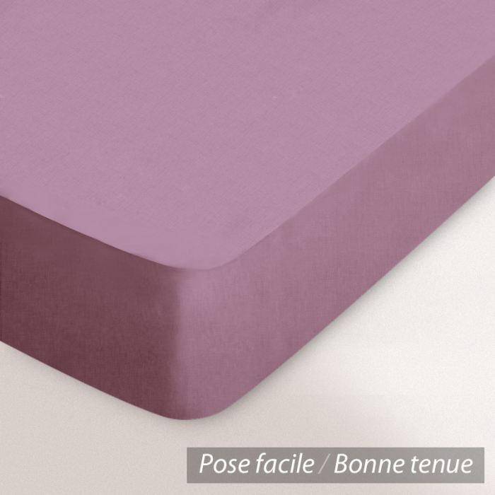 drap housse violet