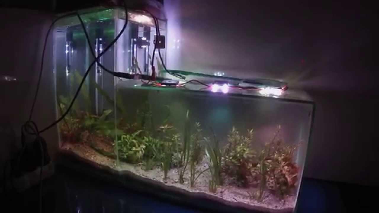 eclairage led aquarium nano